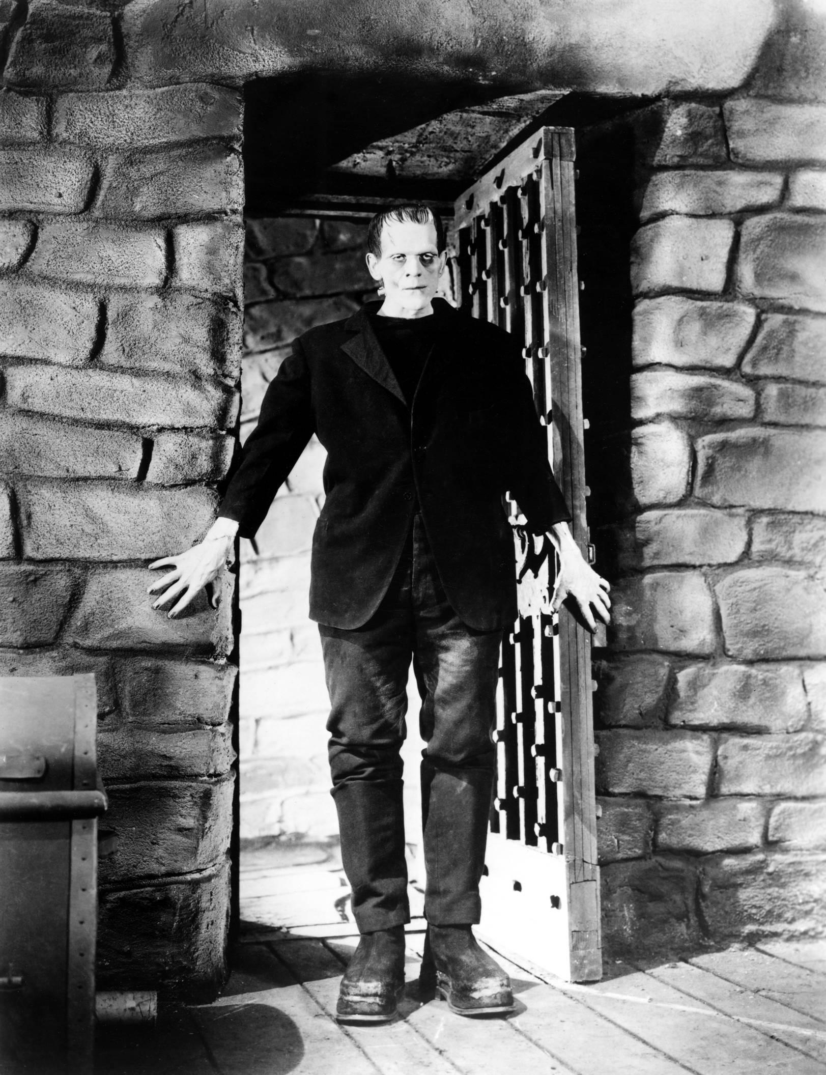 Frankenstein essay, intro help please?