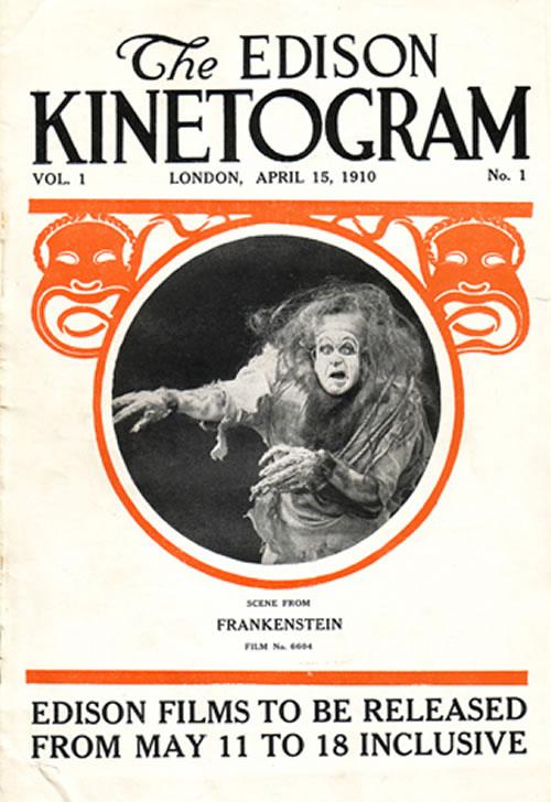 essay novel animal farm novel essay novel study essay essay on     I  Frankenstein